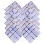 Cotton Stripe Handkerchiefs